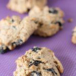 no'tmeal raisin cookies