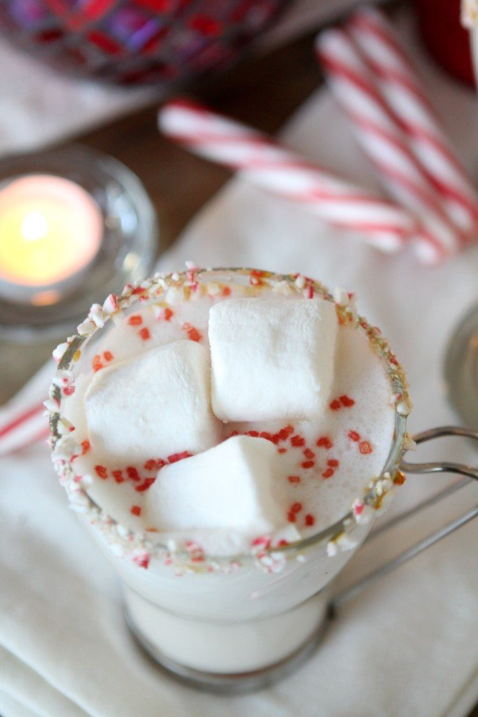 A paleo-ish Peppermint White Hot Chocolate from the Whole Smiths. Kick things up a notch this holiday season with this festive cocktail or simply omit the vodka for a fun kid-friendly drink.