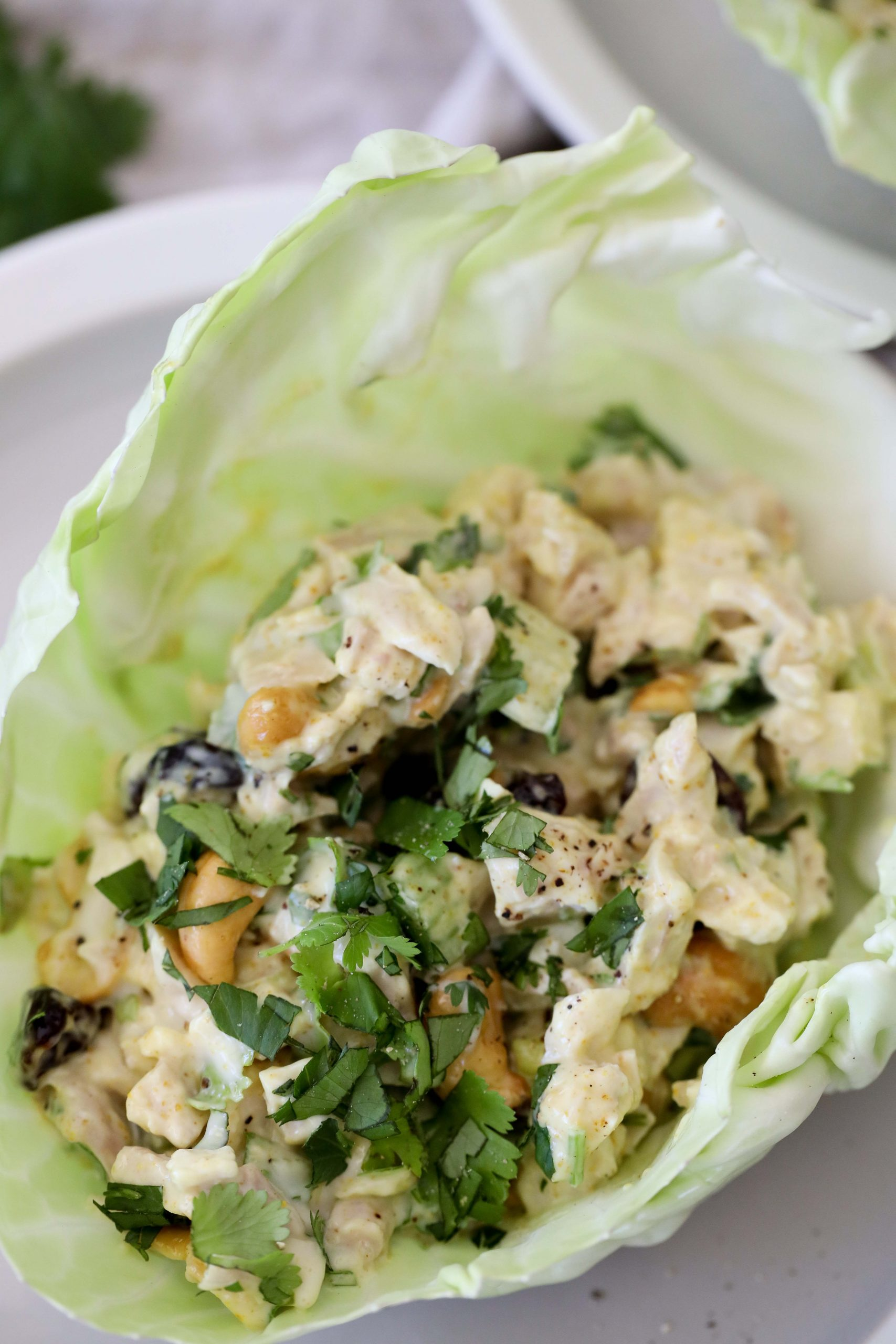 curry chicken salad served in a cabbage cup